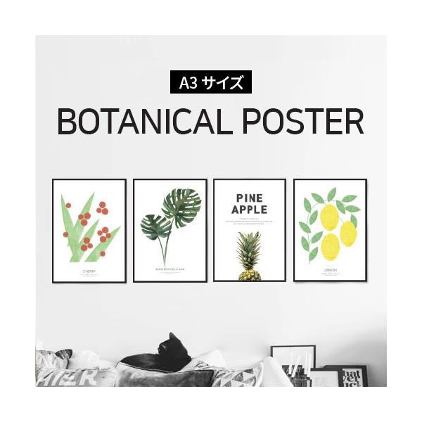 ポスター インテリア A3 ボタニカル 植物 おしゃれ アートポスター アートプリント アートフレーム ボタニカル 選べる12種類 29.7x42cm フレームなし|sangsanghoo-jp
