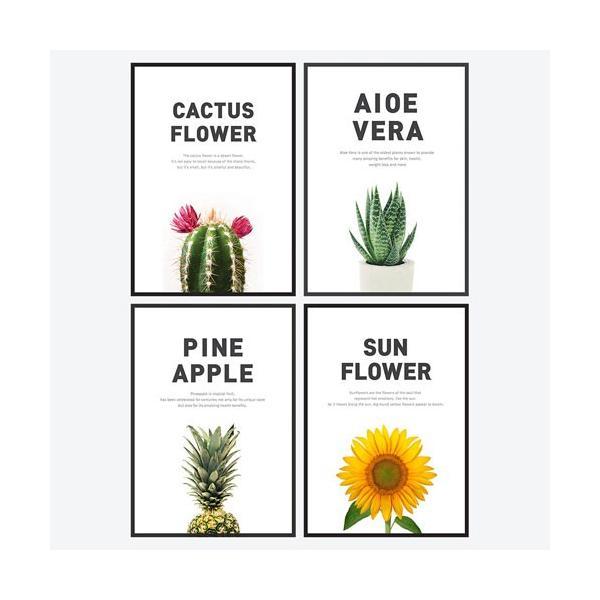 ポスター インテリア A3 ボタニカル 植物 おしゃれ アートポスター アートプリント アートフレーム ボタニカル 選べる12種類 29.7x42cm フレームなし|sangsanghoo-jp|04
