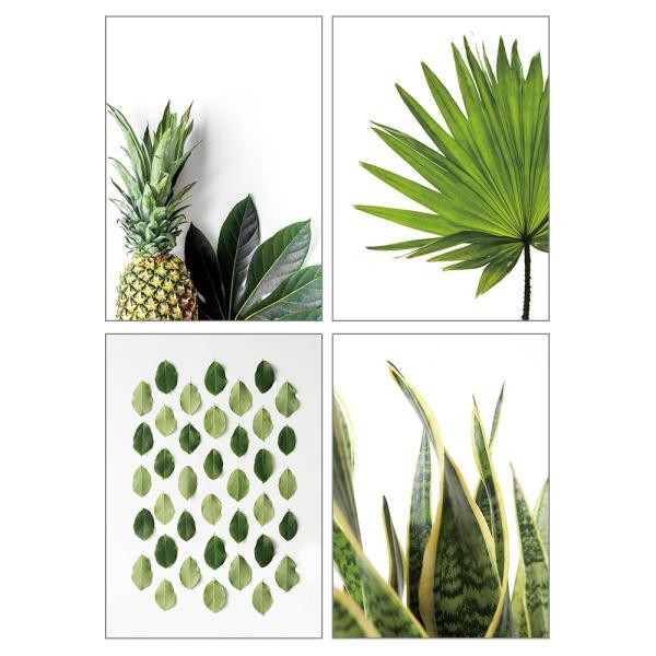 ポスター インテリア A3 ボタニカル 植物 おしゃれ アートポスター アートプリント アートフレーム ボタニカル 選べる12種類 29.7x42cm フレームなし sangsanghoo-jp 05