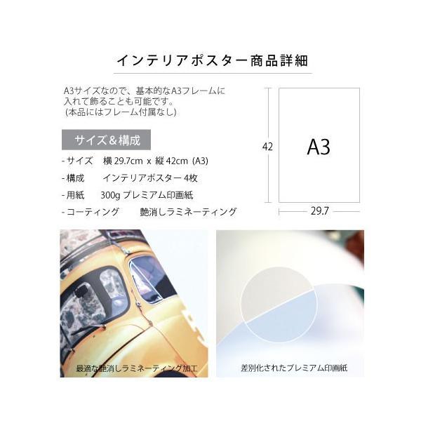 ポスター インテリア A3 ボタニカル 植物 おしゃれ アートポスター アートプリント アートフレーム ボタニカル 選べる12種類 29.7x42cm フレームなし sangsanghoo-jp 08
