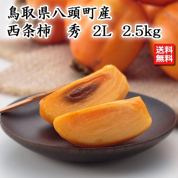 鳥取県産 西条柿 秀 2L 2.5kg JA鳥取いなば