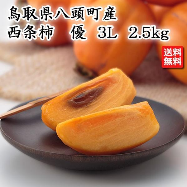 鳥取県産 西条柿 優 3L 2.5kg 産地直送 JA鳥取いなば