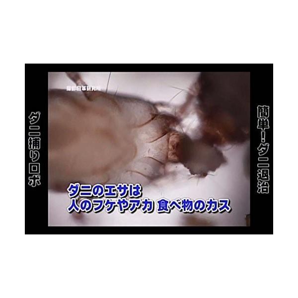 日革研究所 ダニ捕りロボ レギュラーサイズ1個 ダニ ダニ取りシート 送料無料|sanosyoten|08