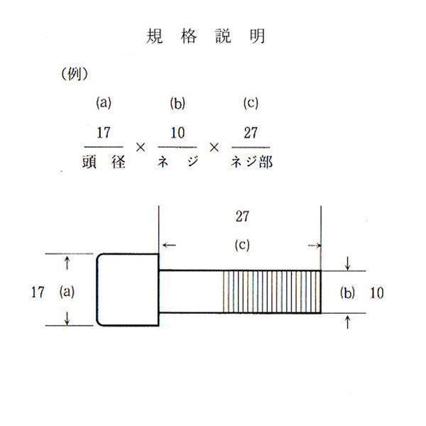 爪ボルト[10本組] B14X9X10X25(8T)|sanseicom|02