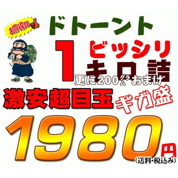 枝豆 山形産1.5キロ箱だだちゃ豆ご家庭用 メガ盛激安超目玉 お届け時期を選べます|santyokuya|04