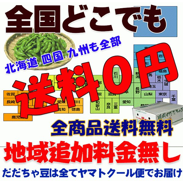 枝豆 山形産1.5キロ箱だだちゃ豆ご家庭用 メガ盛激安超目玉 お届け時期を選べます|santyokuya|07