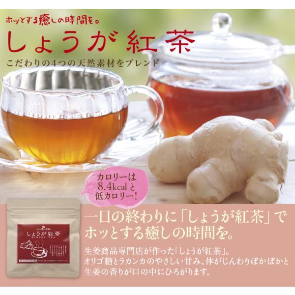 【初回限定】しょうが紅茶(12包)送料無料・セイロン紅茶・高知県産乾燥生姜100%・天然オリゴ糖・紅茶スティック・ポイント5倍 sanwa-y