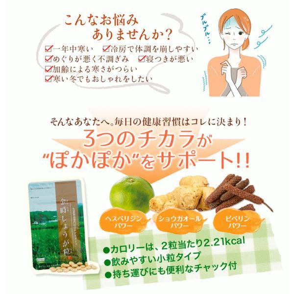 【初回限定】金時しょうが粒 (30粒) 15日分 金時 しょうが 生姜 冷え サプリ  温める ヒアルロン酸|sanwa-y|02