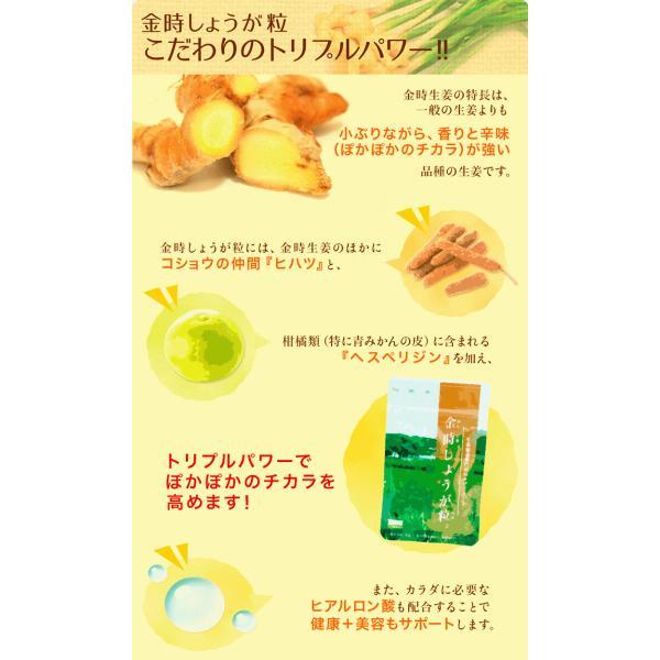 【初回限定】金時しょうが粒 (30粒) 15日分 金時 しょうが 生姜 冷え サプリ  温める ヒアルロン酸|sanwa-y|03