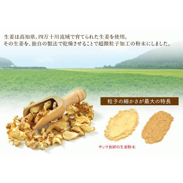 乾燥生姜粉末 30g   乾燥生姜 生姜粉末  生姜パウダー  高知県産生姜100%  なま生姜100個分のショウガオール含有|sanwa-y|02