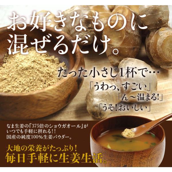 乾燥生姜粉末 30g入り×3袋   乾燥生姜 生姜粉末 生姜パウダー 高知県産生姜100%