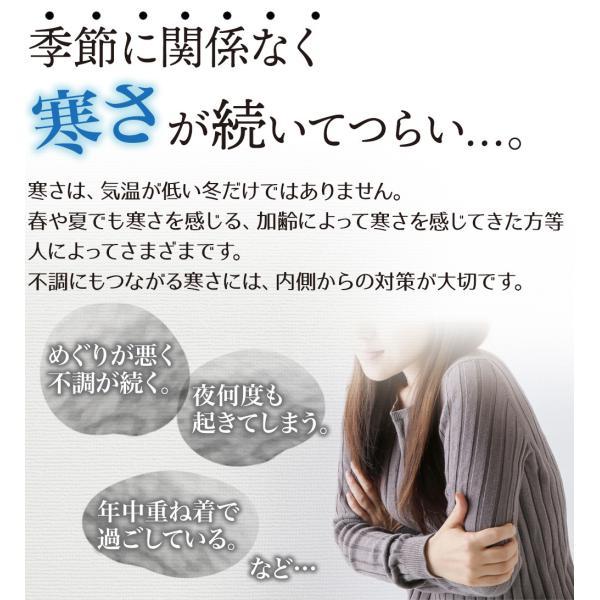 酒粕しょうが粒(93粒)30日分 国産 酒粕 酒かす 生姜 ダイエットサプリ sanwa-y 02