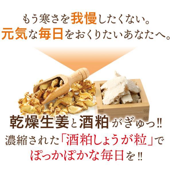 酒粕しょうが粒(93粒)30日分 国産 酒粕 酒かす 生姜 ダイエットサプリ sanwa-y 03