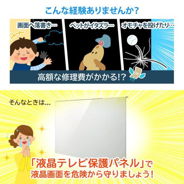 液晶テレビ 保護パネル 48 49型 48 49インチ カバー ガード テレビフィルター(即納)