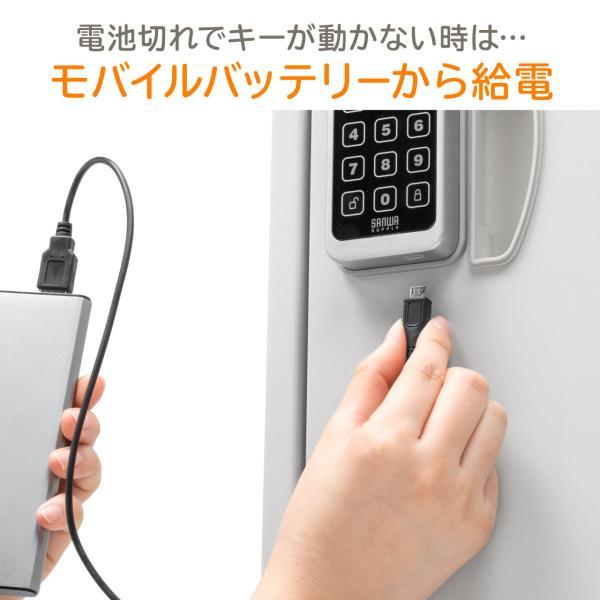 宅配ボックス 戸建て用 大容量 50リットル ネコポス便対応 カード式解錠 宅配ロッカー|sanwadirect|06