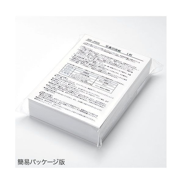 写真用紙 印画紙 100枚 印画紙 プロ仕上げ(即納) sanwadirect 02