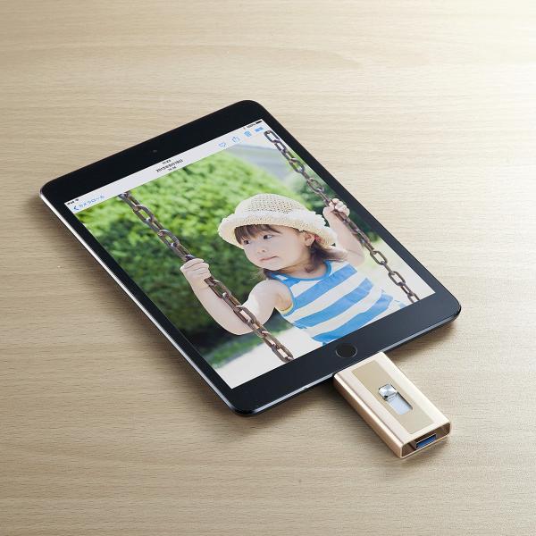 iPhone カードリーダー microSD Lightning マイクロSD(即納) sanwadirect 12