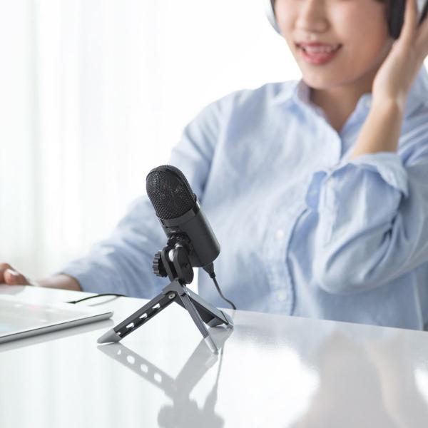USB マイク iPhoneマイク 録音 レコーディング 高音質 ハイレゾ マイクロフォン(即納)|sanwadirect|10