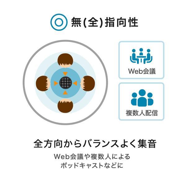 USBマイク 高音質 ハイレゾ録音 PC パソコン マイクロフォン(即納)|sanwadirect|09