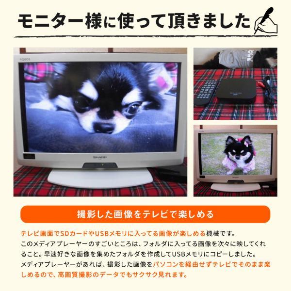 メディアプレーヤー HDMI USBメモリ SDカード(即納)|sanwadirect|08