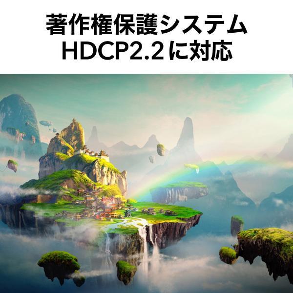 HDMIケーブル 10m 4K対応 長尺 イコライザ内蔵 4K/60Hz 18Gbps伝送対応 HDMI2.0準拠品(即納) sanwadirect 05