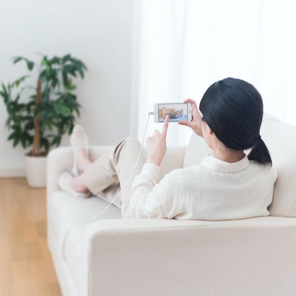 iPhone 充電 ケーブル ライトニング ケーブル 認証 充電 L字型コネクタ 1m(即納) sanwadirect 09