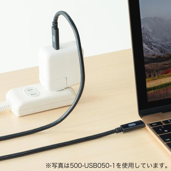Type-C USB ケーブル USB TypeC ケーブル タイプc 充電ケーブル 50cm 0.5m Gen2(即納)|sanwadirect|10