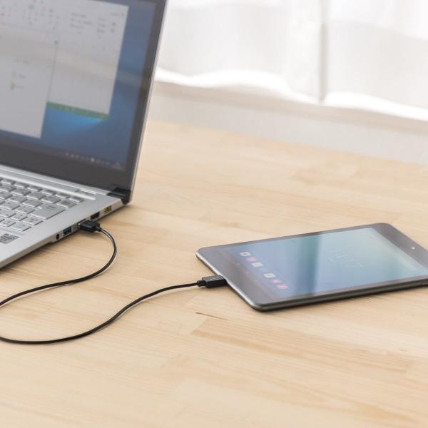USB Type-C ケーブル 充電 Type C 1m(即納) sanwadirect 10
