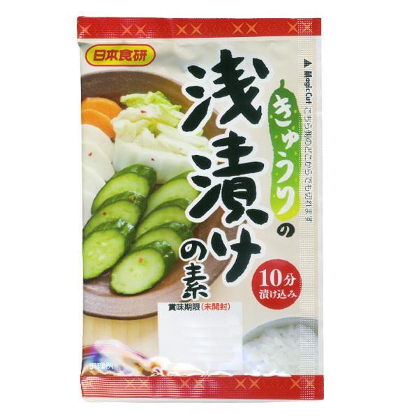 浅漬けの素 20g きゅうり 白菜 大根 パプリカなど いろんなお野菜で 日本食研/0665x10袋セット/卸/送料無料