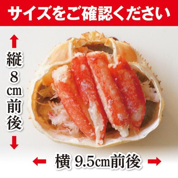 蟹甲羅盛り 85g×2個セット ずわい蟹 蝦夷番屋 北海道 |sapporo-rinkou|10