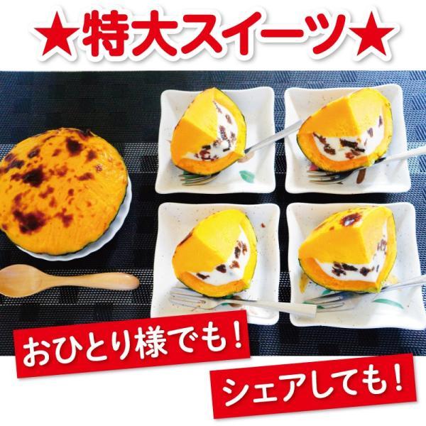 わけあり! 十勝かぼちゃのミルクスィートパンプキン 北海道 牛乳 スイーツ デザート わけあり パーティー アウトレット|sapporo-rinkou|06