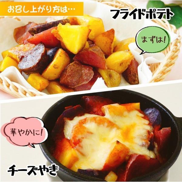 北海道ナチュラルポテトミックス 冷凍600g  じゃがいも 野菜 カット お取り寄せ アントシアニン ポイント消化|sapporo-rinkou|05