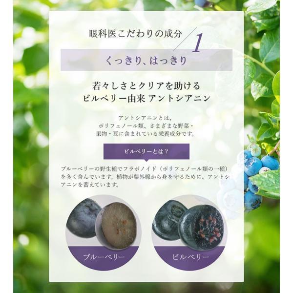 アントシアニン DHA EPA モイスチャーサポートサプリメント 乾きを感じる PC スマホを使う現代人へ 180粒 sapurinojikan 04
