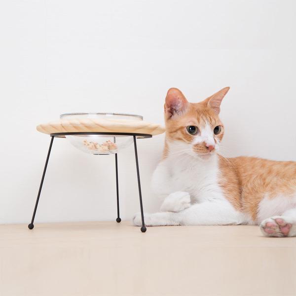 餌皿 フードボウル ペット用食器 食器台 エサ皿 エサ台 [〈MYZOO マイズー〉アウタースペース ペットフードボウルスタンド] サラサデザインストア|sarasa-designstore