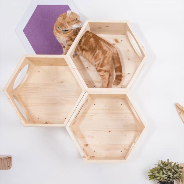 キャットウォーク 壁 キャットタワー [〈MYZOO マイズー〉六角ハウス ビジーキャット] サラサデザインストア|sarasa-designstore