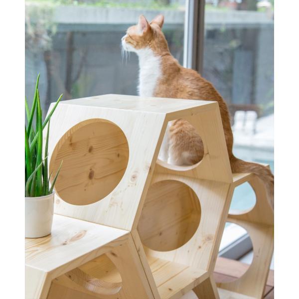 キャットウォーク 壁 キャットタワー [〈MYZOO マイズー〉六角ハウス ビジーキャット] サラサデザインストア|sarasa-designstore|04