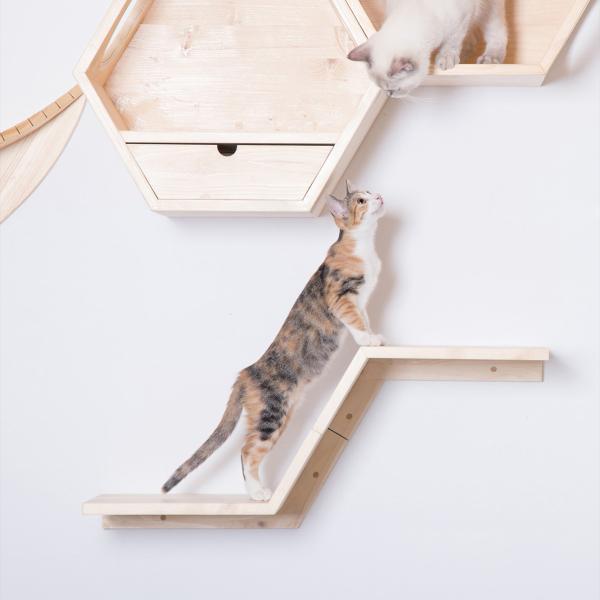 キャットウォーク 壁 キャットタワー [〈MYZOO マイズー〉ZONE(ゾーン)キャットステップ] サラサデザインストア|sarasa-designstore
