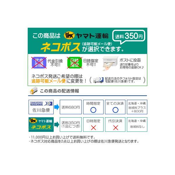 ミズノ mizuno 三進興産/DSISソルボランニング エア 8ZA624 ネコポス発送 11,000円以上お買い上げで送料無料|sarisa|04