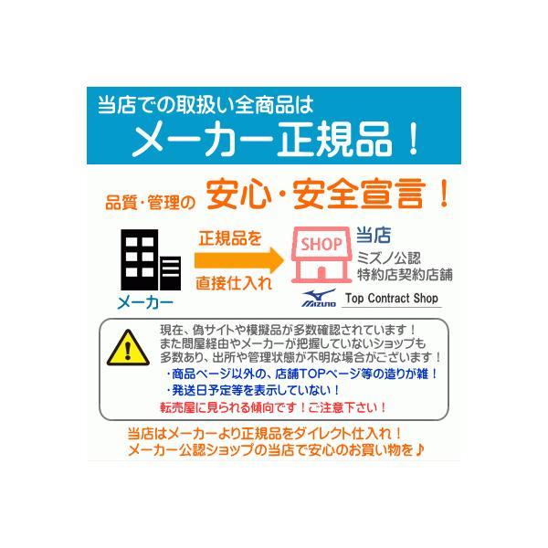 ミズノ mizuno 三進興産/DSISソルボランニング エア 8ZA624 ネコポス発送 11,000円以上お買い上げで送料無料|sarisa|05