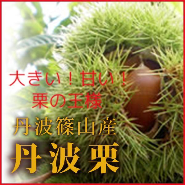 丹波栗(丹波篠山産)3Lサイズ 1kg