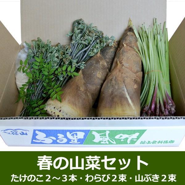 春の山菜セット(たけのこ、わらび、やまぶき)