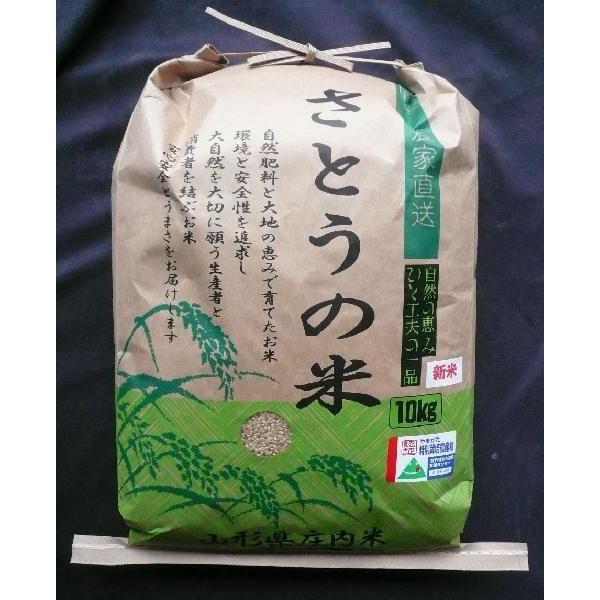 山形県庄内産 はえぬき 精米10kg 特別栽培米 令和1年産
