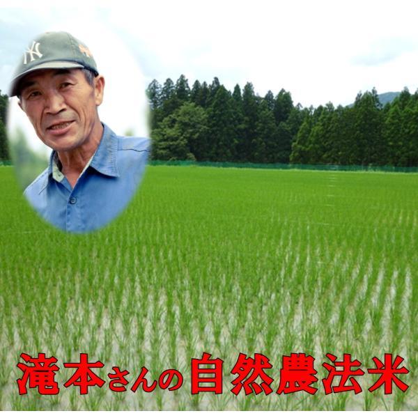 《新米予約》 無農薬 玄米 30kg 令和3年産 新米 福井県産 無農薬米 玄米 無農薬 残留農薬ゼロ