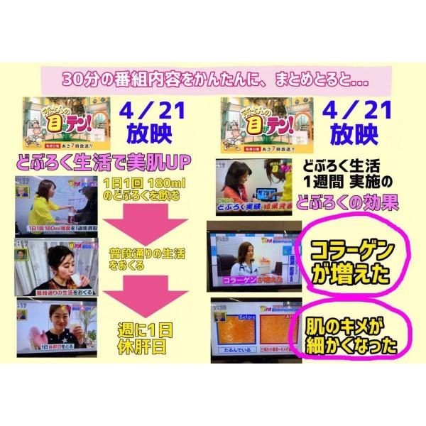 TVで紹介 日本酒 山郷のめぐみ どぶろく 600ml 2本セット 酒蔵から直送|satozake|06