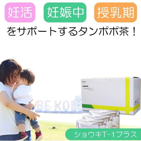 たんぽぽ茶 ショウキT-1プラス 30包 妊活 ノンカフェイン 無農薬 無添加 徳潤 即納|satuma|03