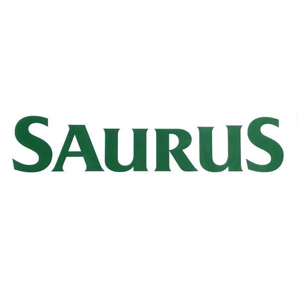 SAURUSウィンドウデカール(湾曲) L saurus-direct-shop