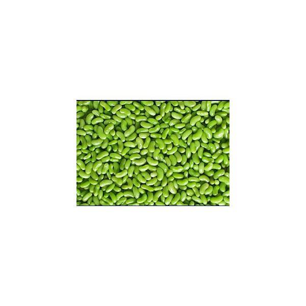 冷凍野菜 フラジョレ(インゲン豆) 1kg