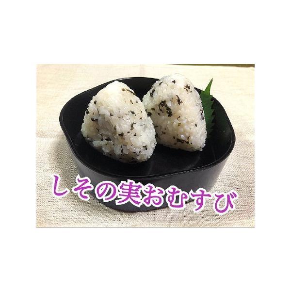 自家製 塩しその実 漬物 塩漬け 無農薬 製造元直送 約230g|sawatsuke|06