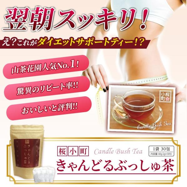 ダイエット 茶 キャンドルブッシュ ラズベリー 30包  送料無料|sazankaen