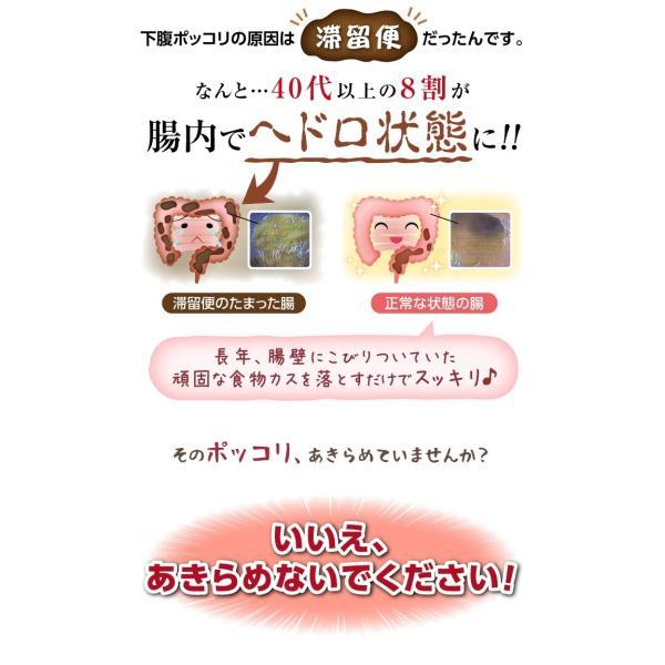 ダイエット 茶 キャンドルブッシュ ラズベリー 30包  送料無料|sazankaen|04